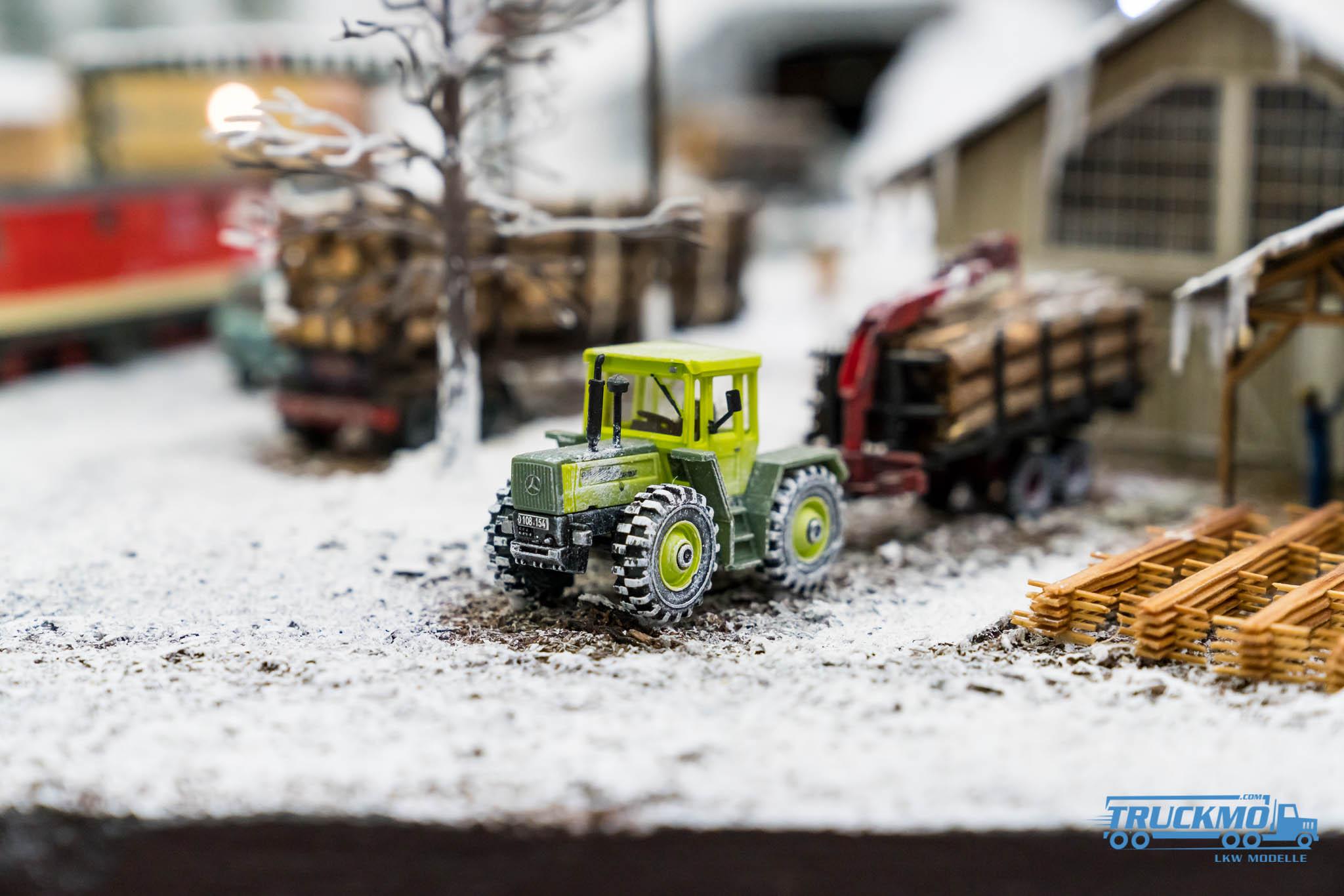 Truckmo_Modellbau_Ried_2017_Herpa_Messe_Modellbauausstellung (76 von 1177)