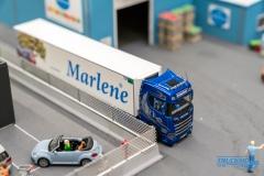 Truckmo_Modellbau_Ried_2017_Herpa_Messe_Modellbauausstellung (166 von 1177)