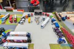 Truckmo_Modellbau_Ried_2017_Herpa_Messe_Modellbauausstellung (186 von 1177)