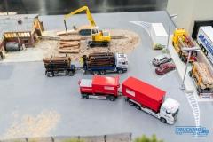 Truckmo_Modellbau_Ried_2017_Herpa_Messe_Modellbauausstellung (195 von 1177)