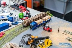 Truckmo_Modellbau_Ried_2017_Herpa_Messe_Modellbauausstellung (196 von 1177)