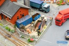 Truckmo_Modellbau_Ried_2017_Herpa_Messe_Modellbauausstellung (208 von 1177)