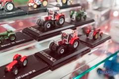 Truckmo_Modellbau_Ried_2017_Herpa_Messe_Modellbauausstellung (50 von 1177)