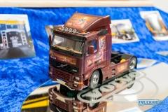 Truckmo_Modellbau_Ried_2017_Herpa_Messe_Modellbauausstellung (511 von 1177)